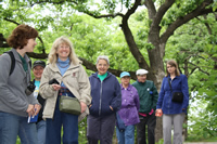 Senior Nature Walk