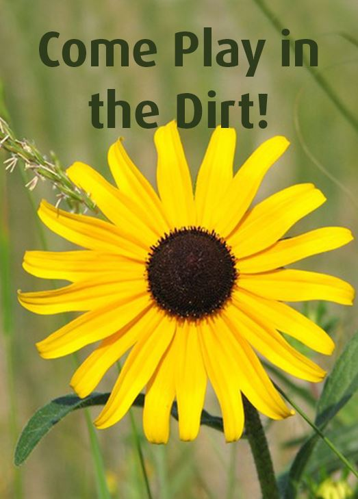 Flower with yellow petals. Text: Come play in the dirt!